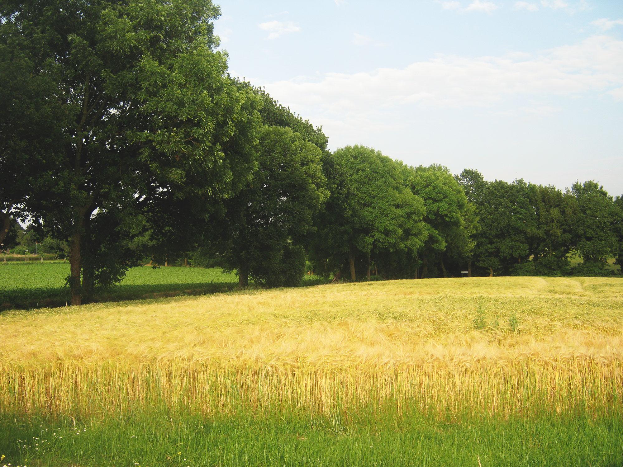 Zorgboerderij Ravensbosch Hulsberg omgeving